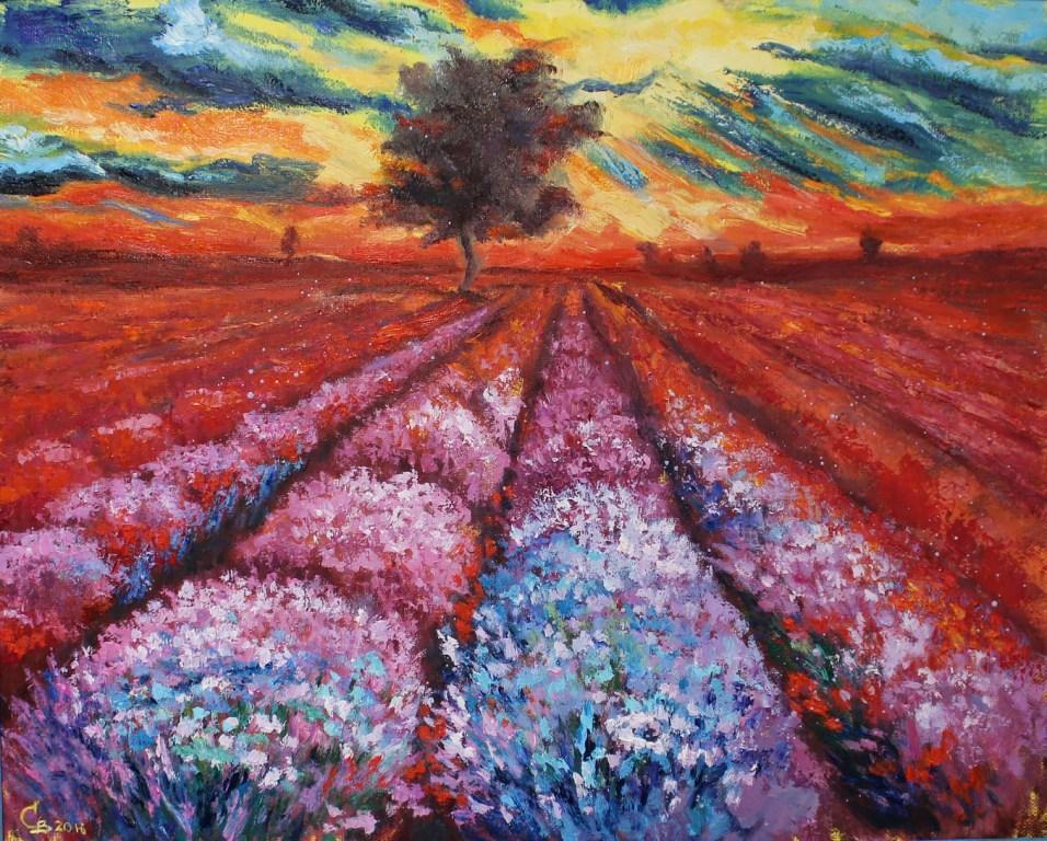 картина масло лавандовое поле на закате